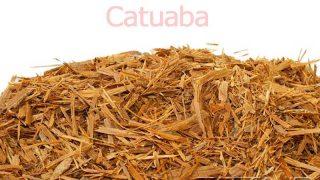 カツアバ(カツアーバ)の効果・効能 | 精力剤・滋養強壮剤の原料