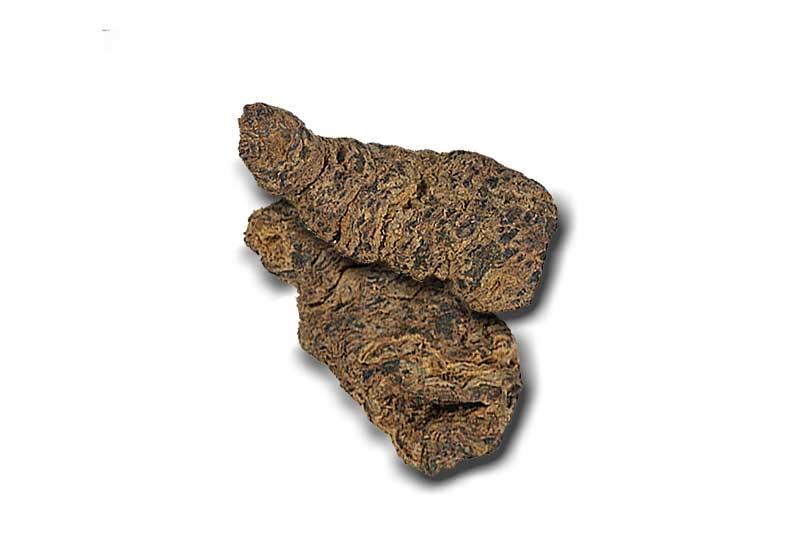 地黄(ジオウ)の効果・効能 | 精力剤・滋養強壮剤の原料