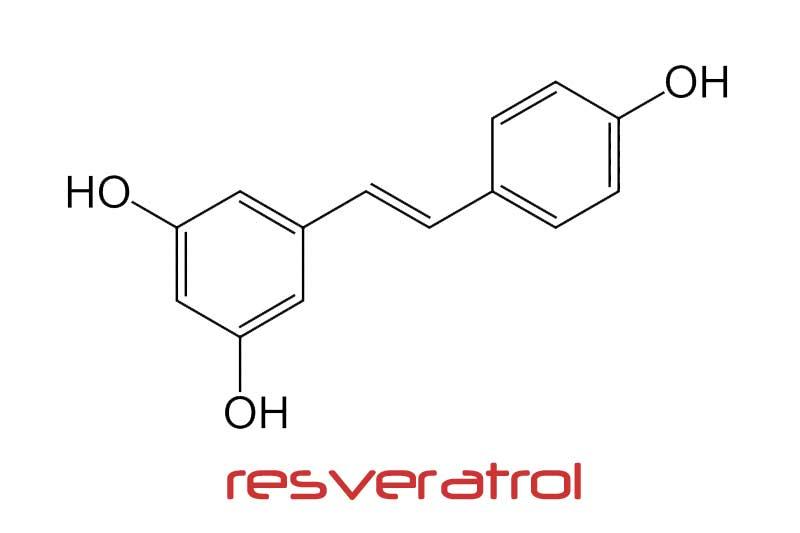 レスベラトロールの効果・効能| 精力剤・滋養強壮剤の原料